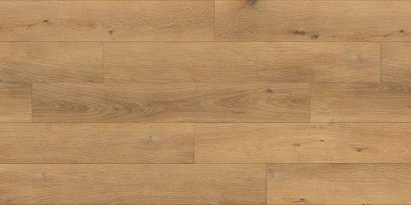 Twelve Oaks Gold Coast Solidcore Luxury Vinyl @ Floors Direct North